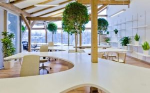 stylish offices for workers